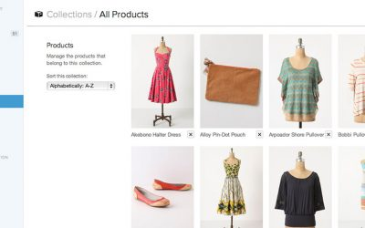 Creating an Online Store with Shopify